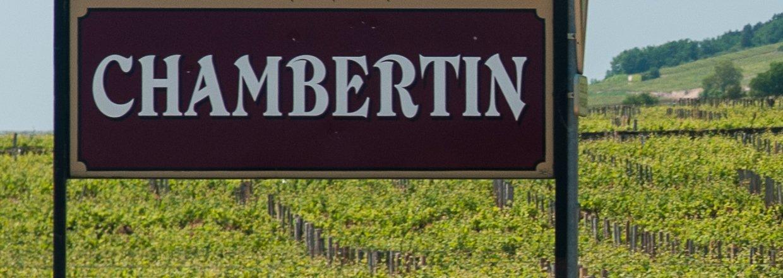 Eksperter i Bourgogne-vine