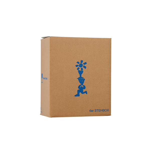 Forsendelseskarton 6 stk Stehbox